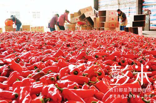 彭州与农业部联手共建国家级蔬菜市场-彭米网