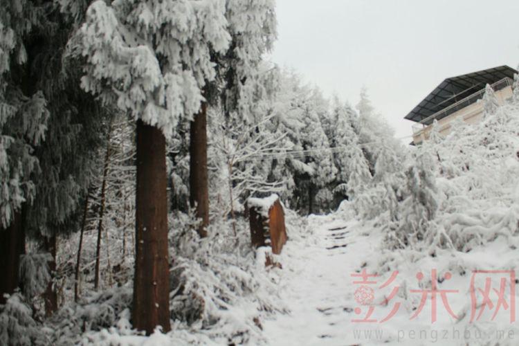 是时候该来彭州天台上看雪了!-彭米网
